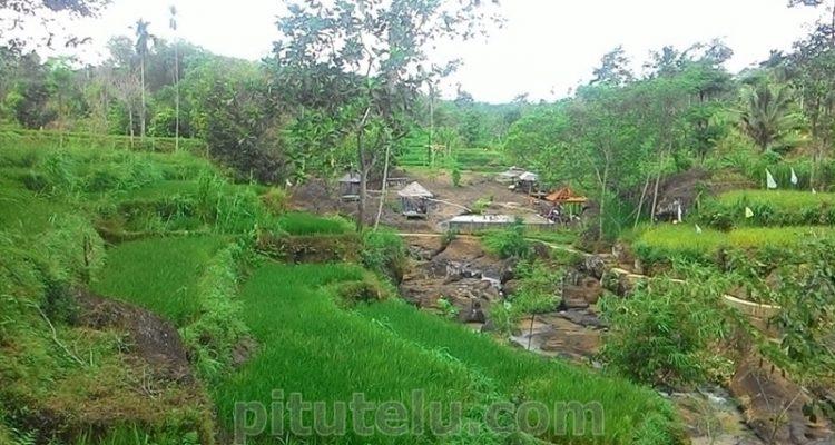 Taman Rengganis Desa Glingseran Bondowoso